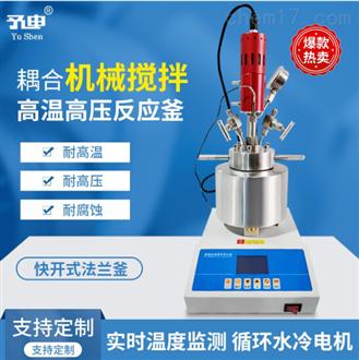 機械攪拌高溫高壓釜