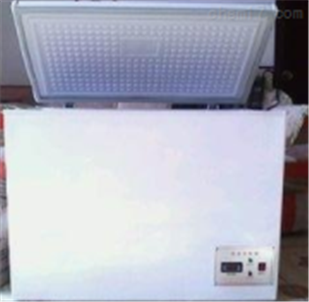 DW-40ADW-40低温试验箱