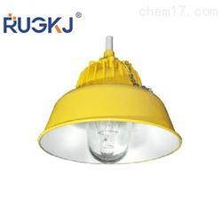 BYC6218A-250W高亮度防爆道路灯