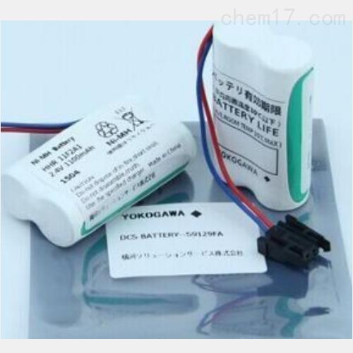 S9765UK电池S9400UK模块日本横河YOKOGAWA