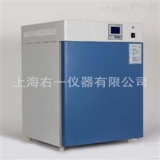 DHP-9012小型實驗室電熱恒溫培養箱