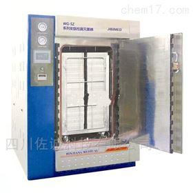 WG-SZ系列安瓿检漏/脉动真空灭菌器