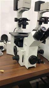 二手奥林巴斯显微镜