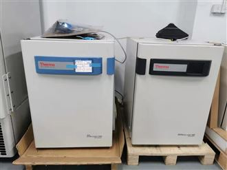 i160二手 Thermo Forma二氧化碳培养箱