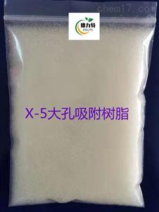 X-5 大孔吸附树脂