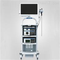 290系列OLYMPUS电子支气管镜