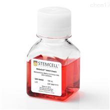 H4534stemcell MethoCult无EPO甲基纤维素培养基