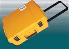 DPS500便携式气相色谱仪