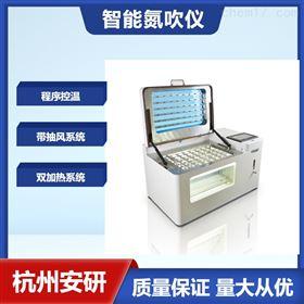 AYAN-DC60S杭州安研氮吹仪60位智能氮气浓缩仪