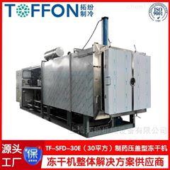 冻干米粉汤冷冻干燥机  冻干机生产果蔬成本