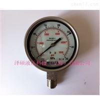 Y-ML63-25-ZMULLER超高压压力表