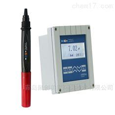 上海雷磁在线pH/ORP计