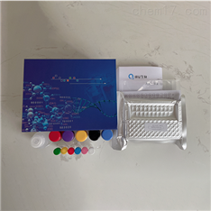 小鼠8羥基脫氧鳥苷(8-OHdG)ELISA試劑盒