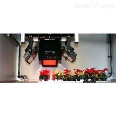 平面式叶绿素荧光成像系统