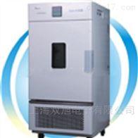 LHS-100CH-LHS-100CH恒温恒湿箱-平衡式控制