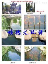 景观鱼池循环水处理方案及效果示意图