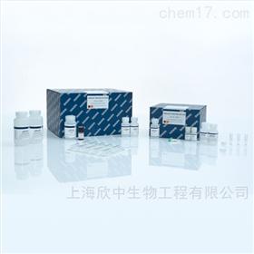 基因组DNA小提试剂盒