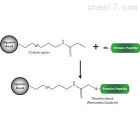 786-794G-Biosciences 巯基偶联树脂 抗体纯化