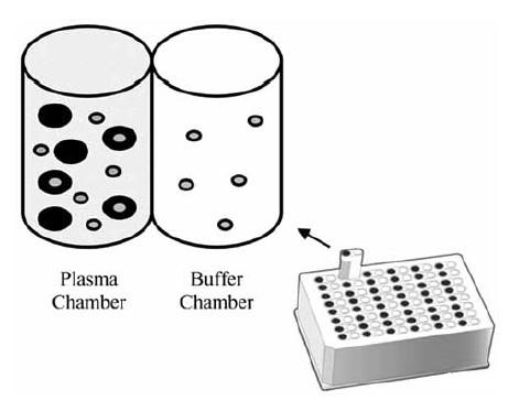 平衡透析法测定血浆蛋白结合率原理及装置