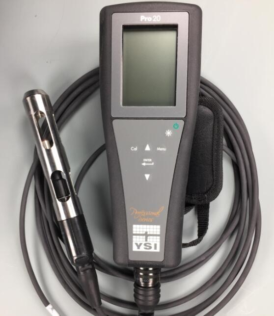 YSI Pro20溶解氧测量仪