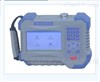 SLDC-800蓄電池內阻測試儀