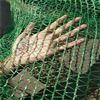 綠色三針蓋土網批發價